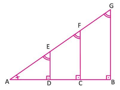 Dik Üçgende Trigonometri