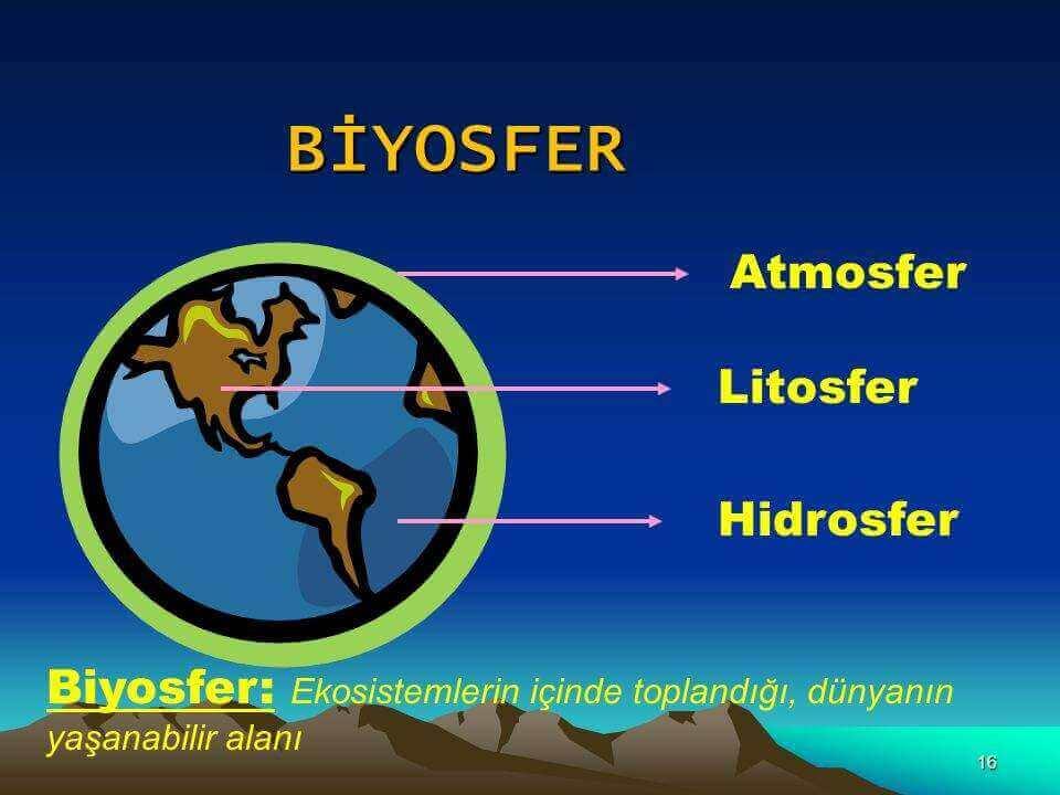 biyosfer