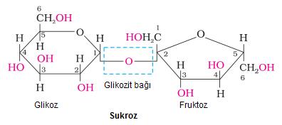 glikozit-bagi-2