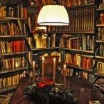 Roman Türleri ve Özellikleri