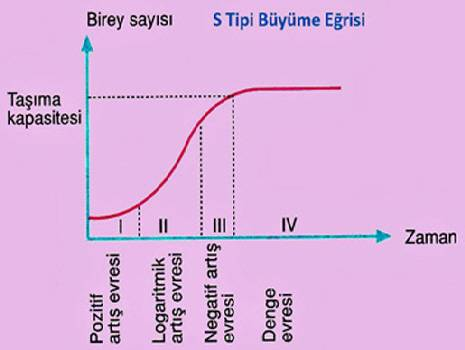 s-tipi-buyume-egrisi