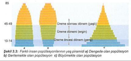 Popülasyon Ekolojisi